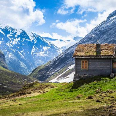 Energooszczędny dom czy mieszkanie w centrum?
